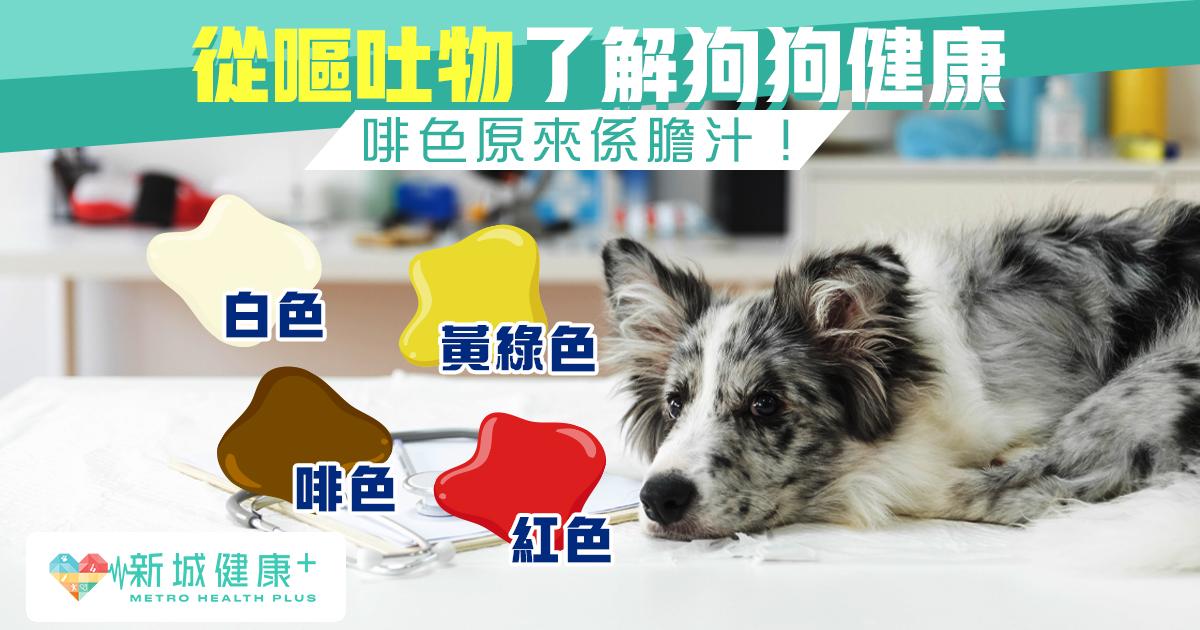 新城健康+ 狗狗 嘔吐物 顏色