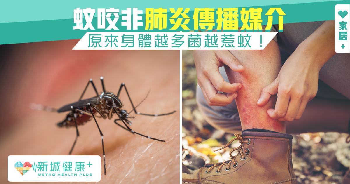 新城健康+ 蚊 新冠肺炎